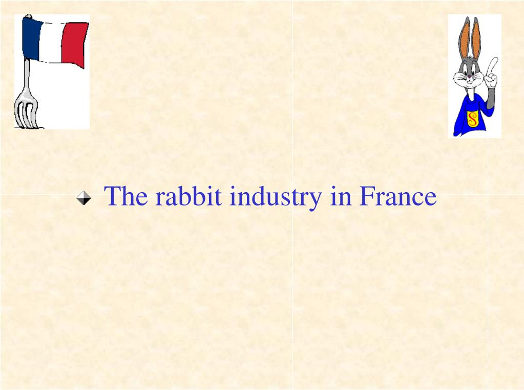 The rabbit industry in France