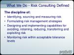 what we do risk consulting defined