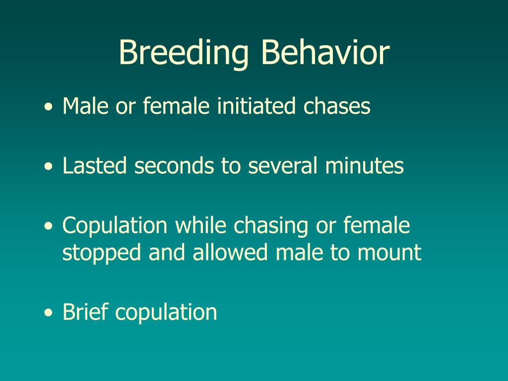 Breeding Behavior