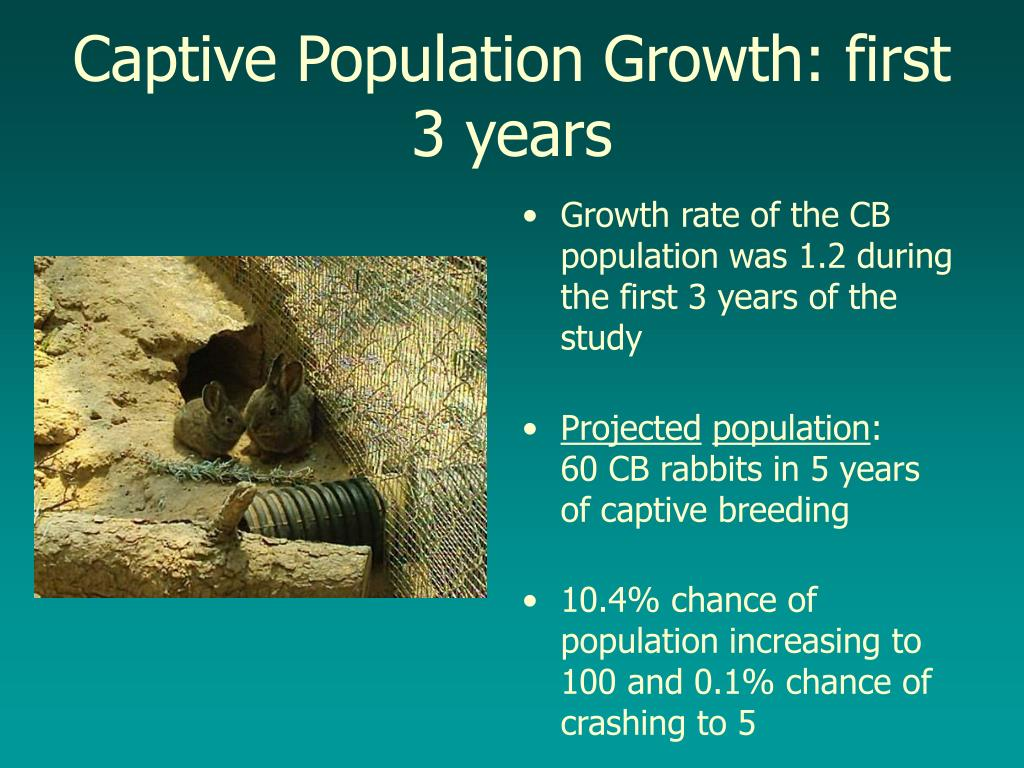 Captive Population Growth: first 3 years