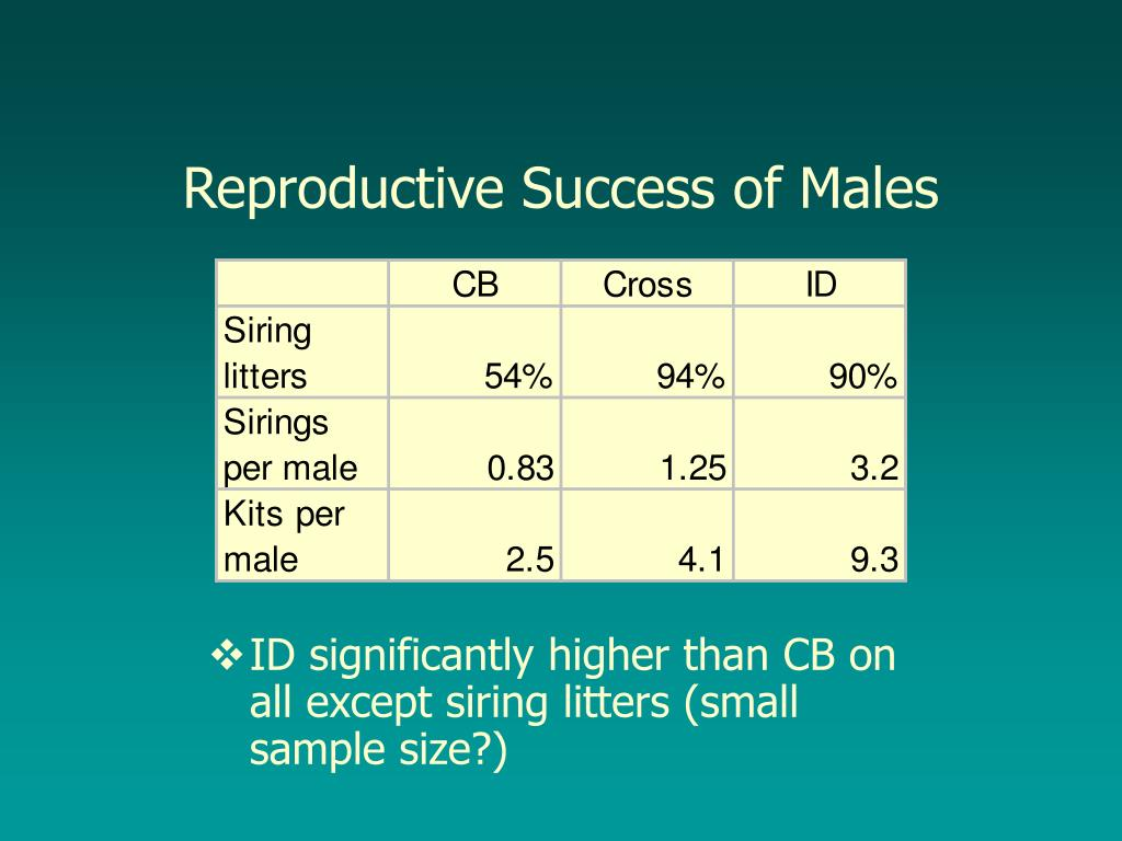 Reproductive Success of Males