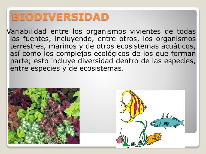 Variabilidad entre los organismos vivientes de todas las fuentes, incluyendo, entre otros, los organismos terrestres, marinos y de otros ecosistemas acuáticos, así como los complejos ecológicos de los que forman parte; esto incluye diversidad dentro de las especies, entre especies y de ecosistemas.