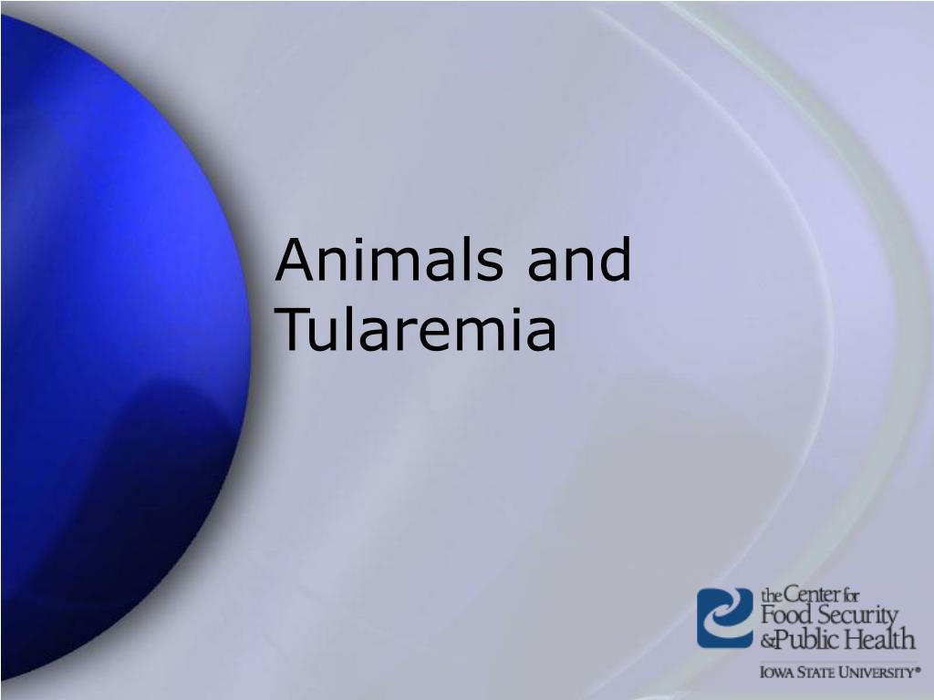 Animals and Tularemia