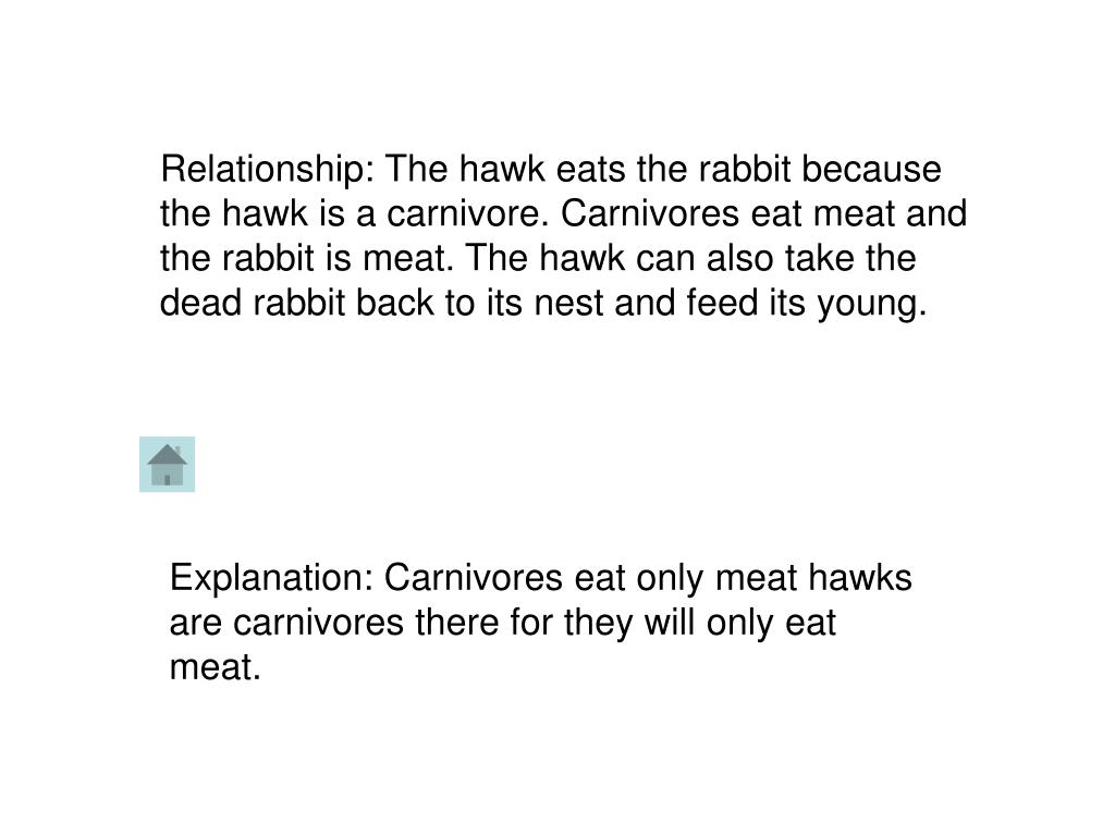 Relationship: The hawk eats the rabbit because the hawk is a carnivore. Carnivores eat meat and the rabbit is meat. The hawk can also take the dead rabbit back to its nest and feed its young.