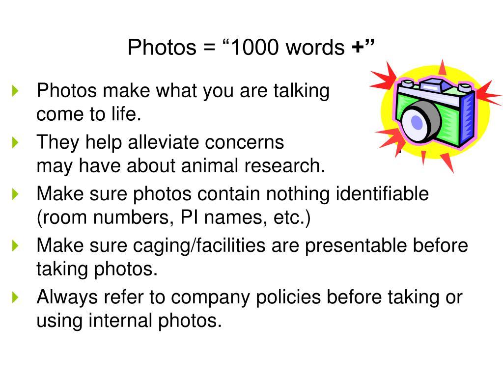 "Photos = ""1000 words"