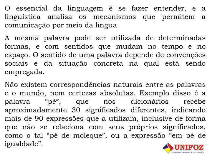 O essencial da linguagem  se fazer entender, e a lingustica analisa os mecanismos que permitem a comunicao por meio da lngua.