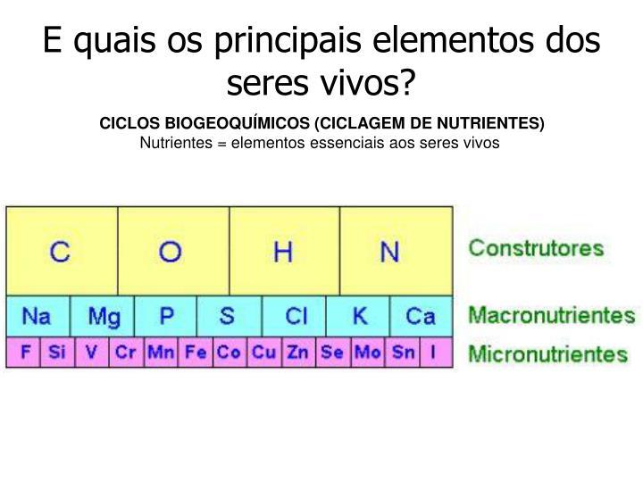 E quais os principais elementos dos seres vivos?