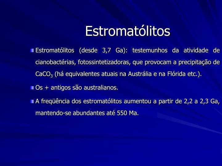 Estromatólitos