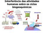 interfer ncia das atividades humanas sobre os ciclos biogeoqu micos
