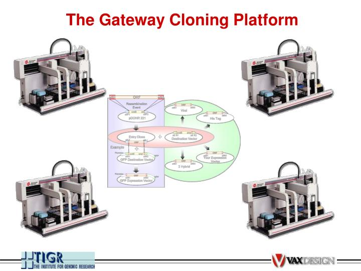 The Gateway Cloning Platform
