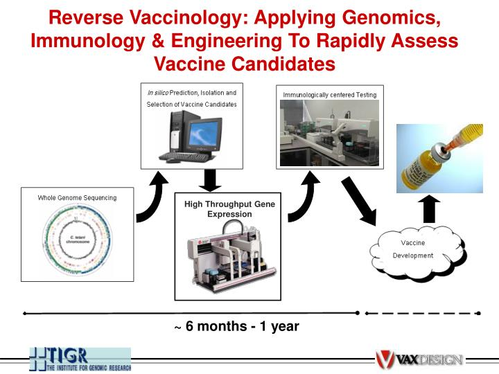 Reverse Vaccinology: Applying Genomics, Immunology & Engineering To Rapidly Assess Vaccine Candidates