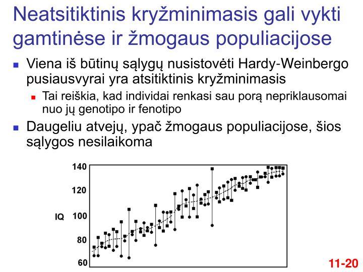 Neatsitiktinis kryžminimasis gali vykti gamtinėse ir žmogaus populiacijose