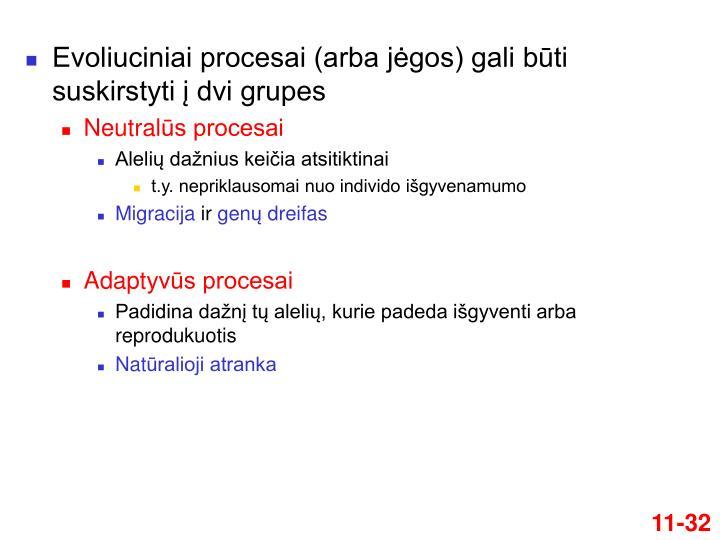 Evoliuciniai procesai (arba jėgos) gali būti suskirstyti į dvi grupes