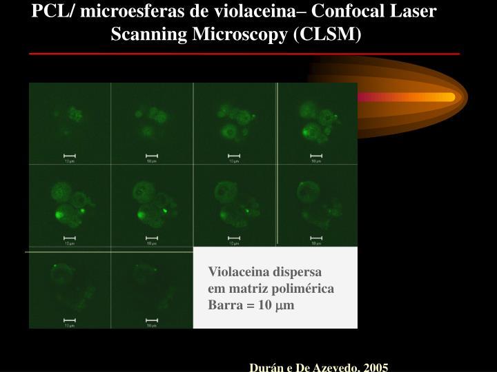 PCL/ microesferas de violaceina– Confocal Laser