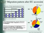 migration pattern after eu accession