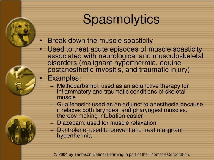 Spasmolytics