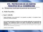 xvi proyeccion de los nuevos principios en la constitucion4