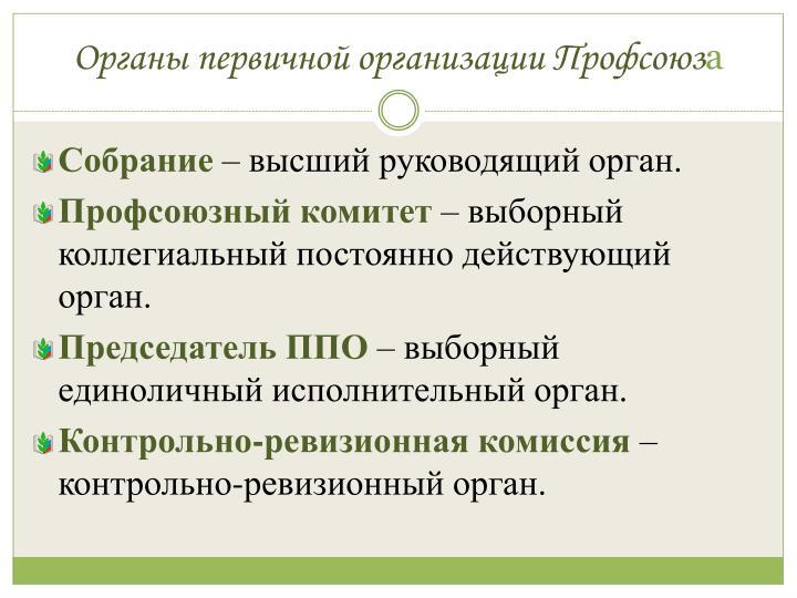 Органы первичной организации Профсоюз