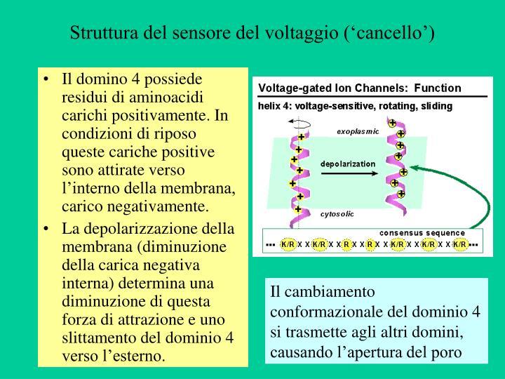 Struttura del sensore del voltaggio ('cancello')