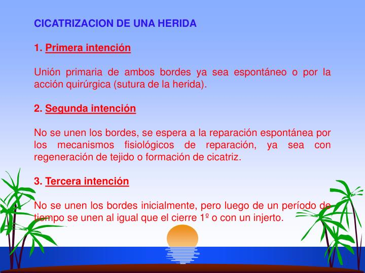 CICATRIZACION DE UNA HERIDA