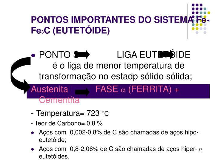 PONTOS IMPORTANTES DO SISTEMA Fe-Fe