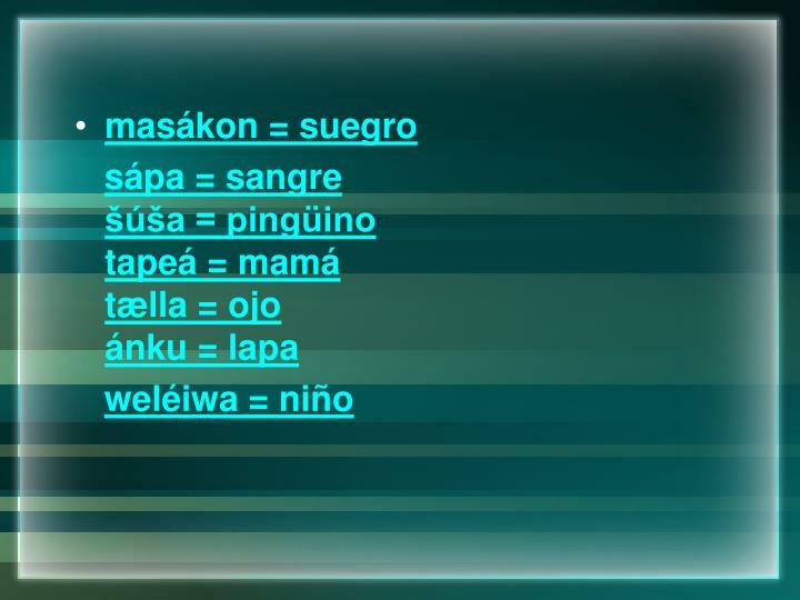 masákon = suegro