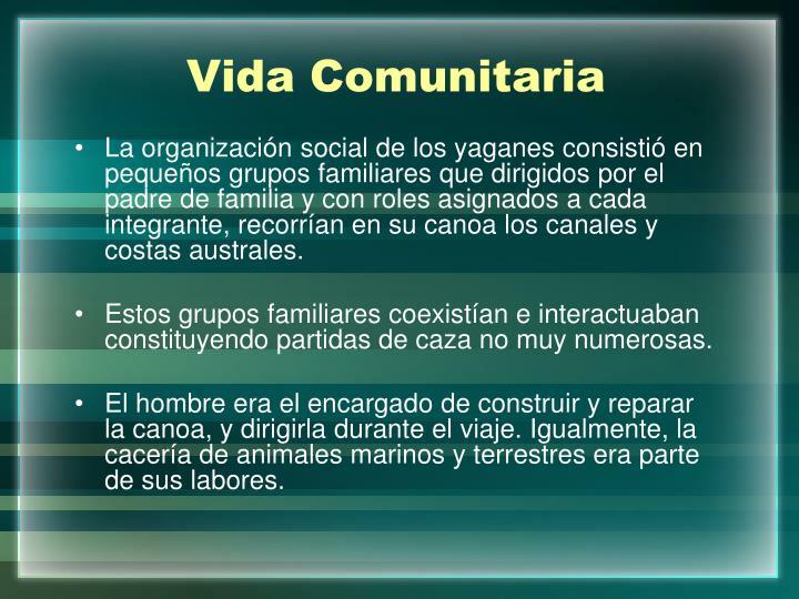 Vida Comunitaria