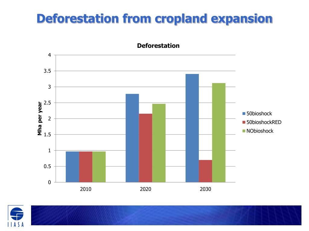 Deforestation from cropland expansion