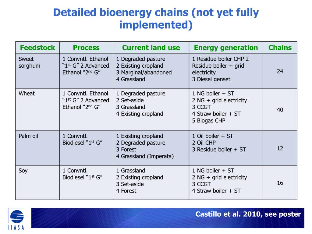 Detailed bioenergy chains (not yet fully implemented)