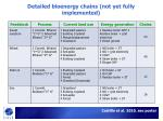 detailed bioenergy chains not yet fully implemented