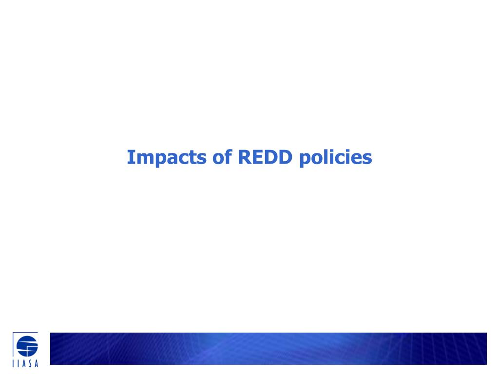 Impacts of REDD policies