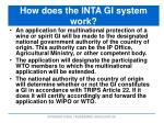 how does the inta gi system work