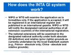 how does the inta gi system work1