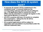 how does the inta gi system work2