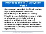 how does the inta gi system work3