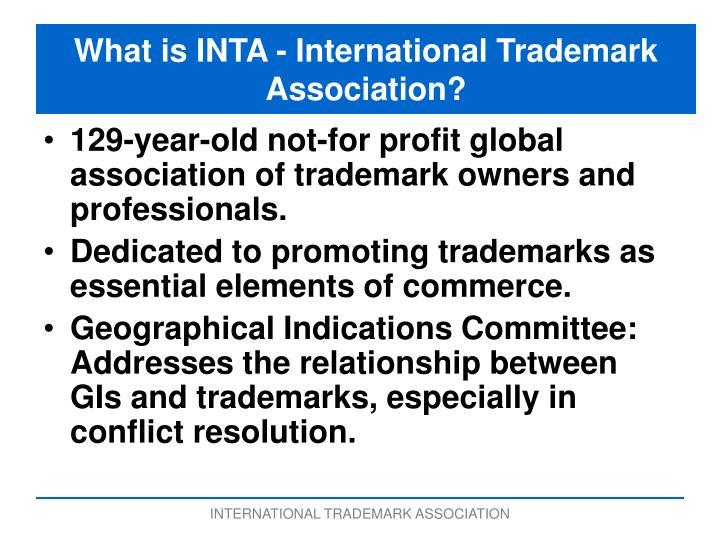 What is INTA - International Trademark Association?