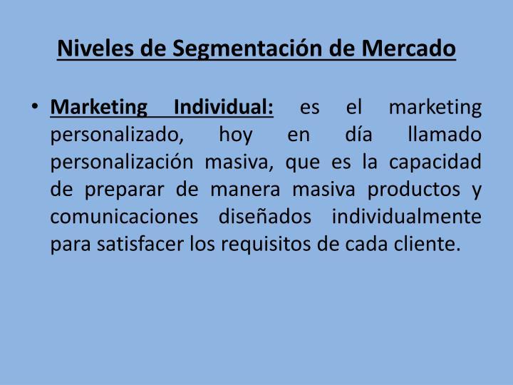 Niveles de Segmentación de Mercado