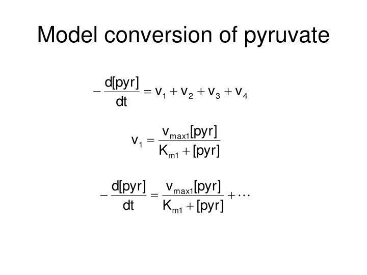 Model conversion of pyruvate