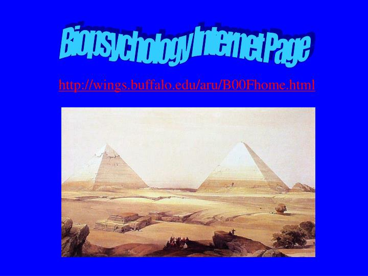 Biopsychology Internet Page