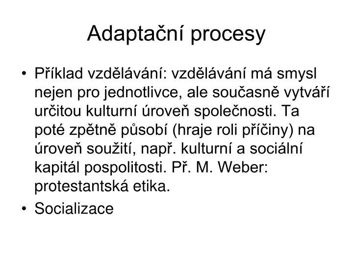 Adaptan procesy