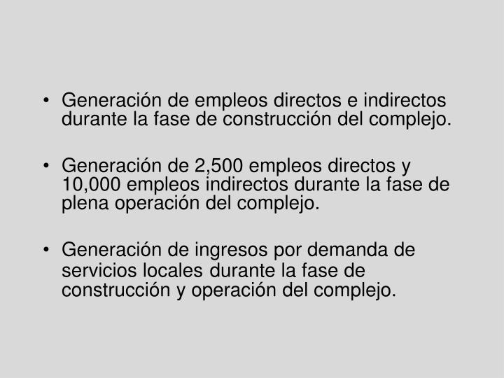 Generación de empleos directos e indirectos durante la fase de construcción del complejo.