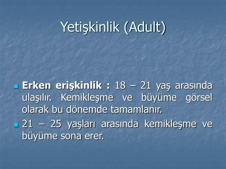 Yetişkinlik (Adult)