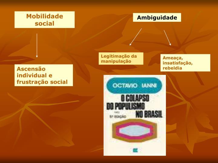 Mobilidade social