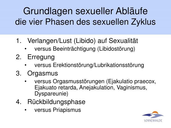 Grundlagen sexueller Abläufe