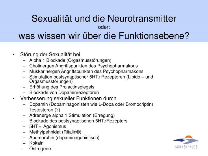 Sexualität und die Neurotransmitter