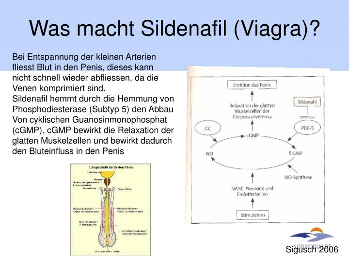 Was macht Sildenafil (Viagra)?