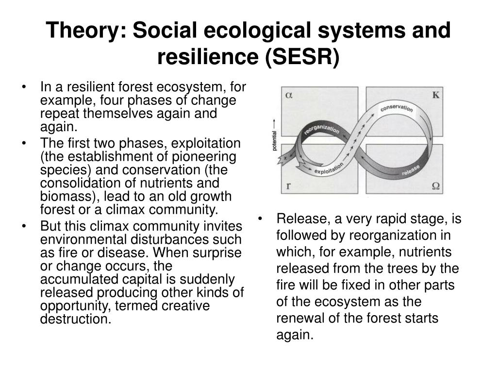 Theory: Social ecological systems and resilience (SESR)