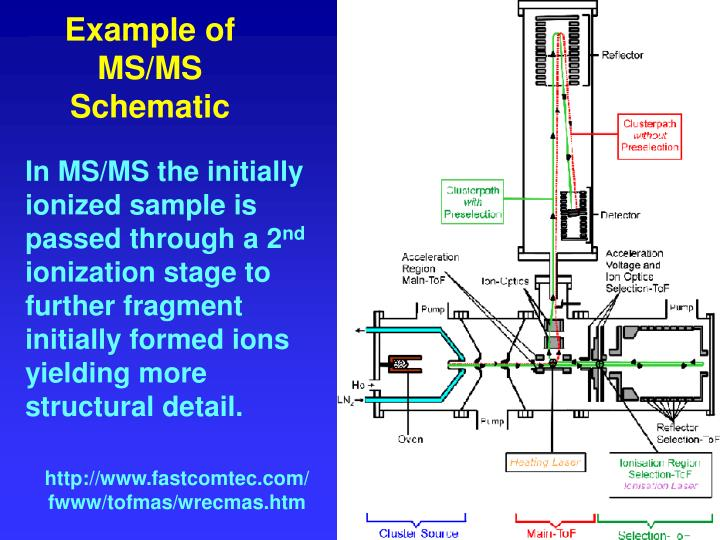 Example of MS/MS Schematic
