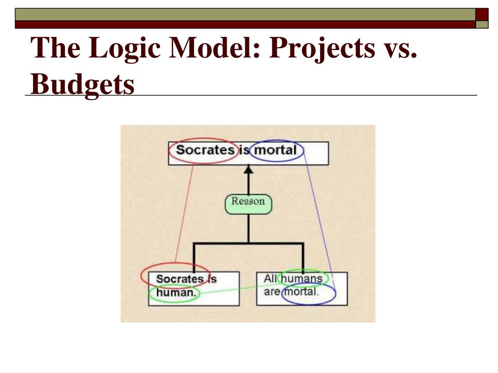 The Logic Model: Projects vs. Budgets