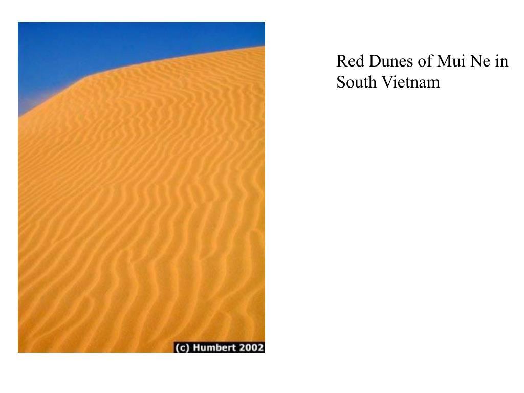 Red Dunes of Mui Ne in